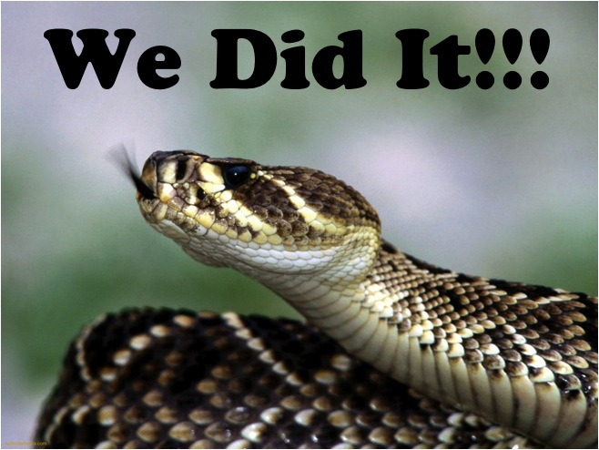 Claxton GA agrees to end their 40+ years of Rattlesnake Roundups