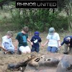 Rhinos United Poster