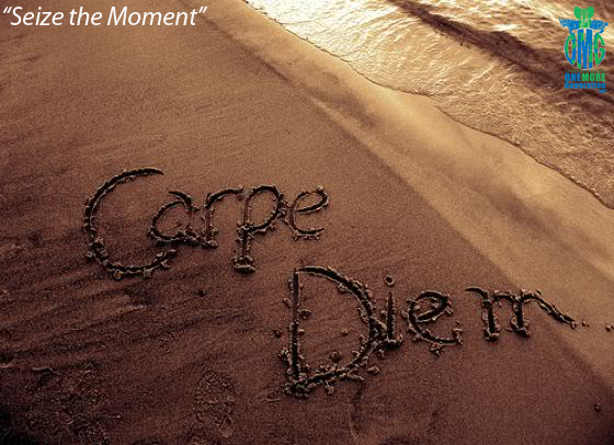 Carpe diem (Seize the moment)