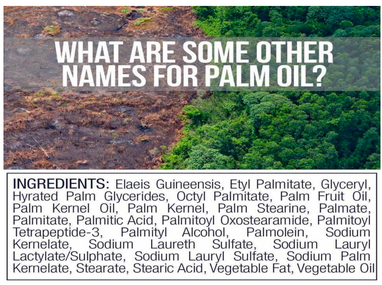 Here are some of the names used to disguise palm oil in food labels. Image provided by Robert Piller. Campaign Against the Trade in Endangered Species..