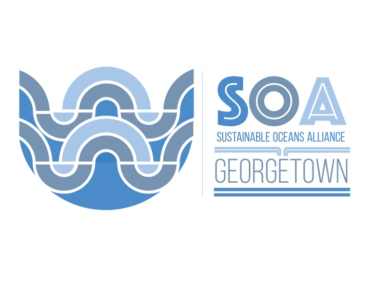 Sustainable Oceans Alliance