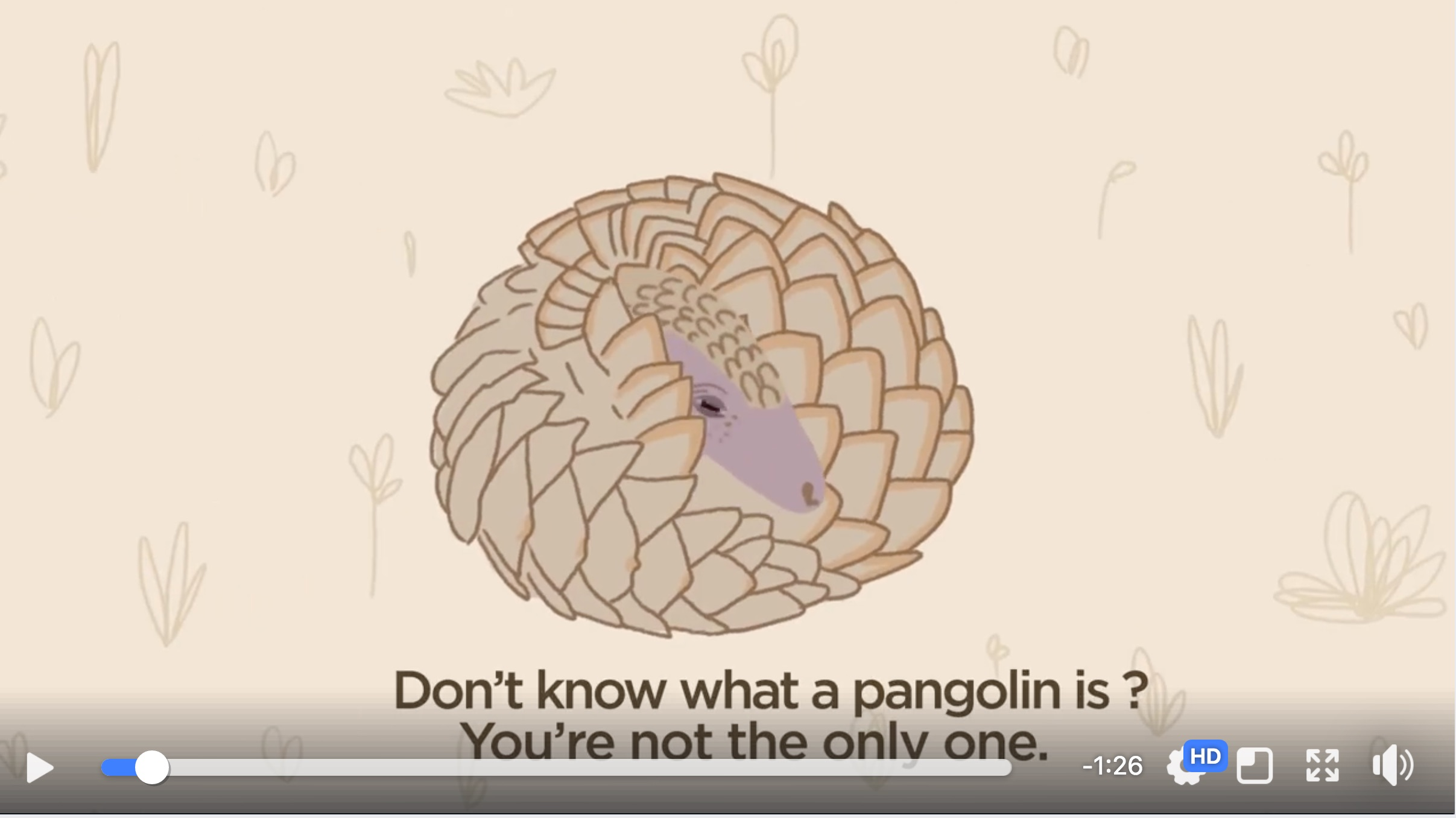 World Pangolin Day 2018