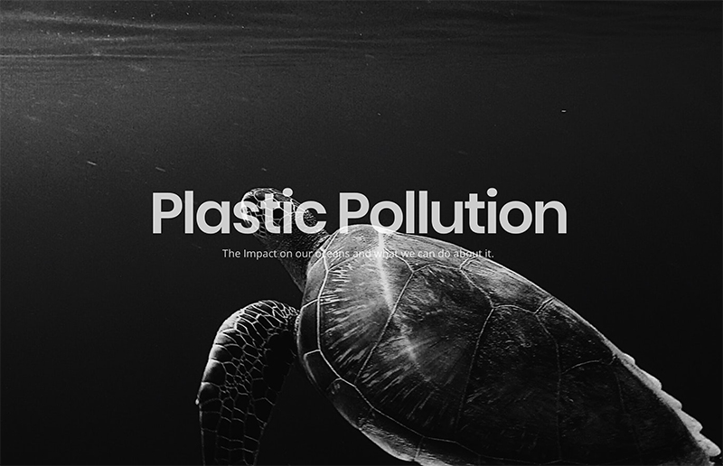 Plastic Pollution Guide